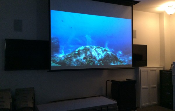 Projection / Flat Panel Displays